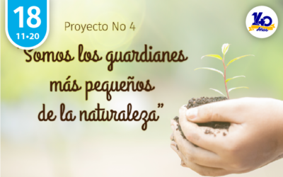 Socialización Proyecto N°4